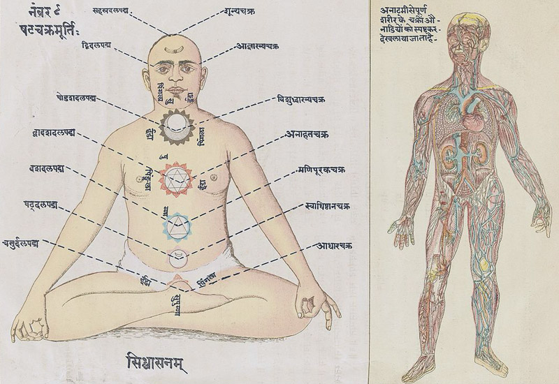 Chakras and acupuncture